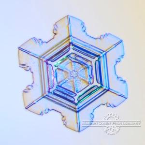 Snowflake, snow crystal, photograph, macro, photography, close up, Kodiak, Alaska, Anchorage