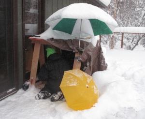 Photograph, snowflakes, macro, close up, snow, crystals, Kodiak, Alaska