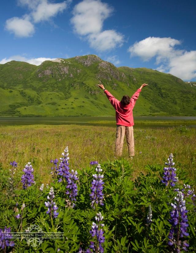 happy, Kodiak, Island, Alaska, lupine, wildflowers, blue sky, sun, sunshine, woman, flowers, summer