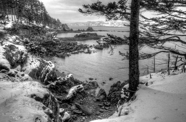 Kodiak, Alaska, photograph, snow, winter, scenic, forest, trees, ocean, waves, park, island