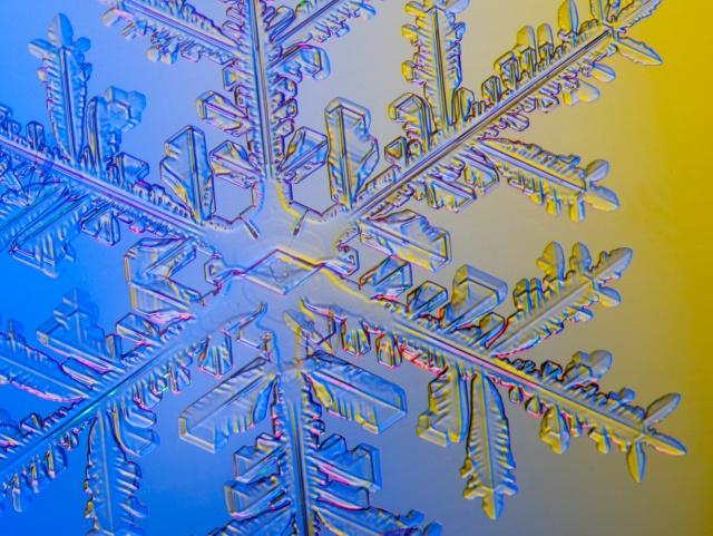 snowflake, snow crystal, real snowflake