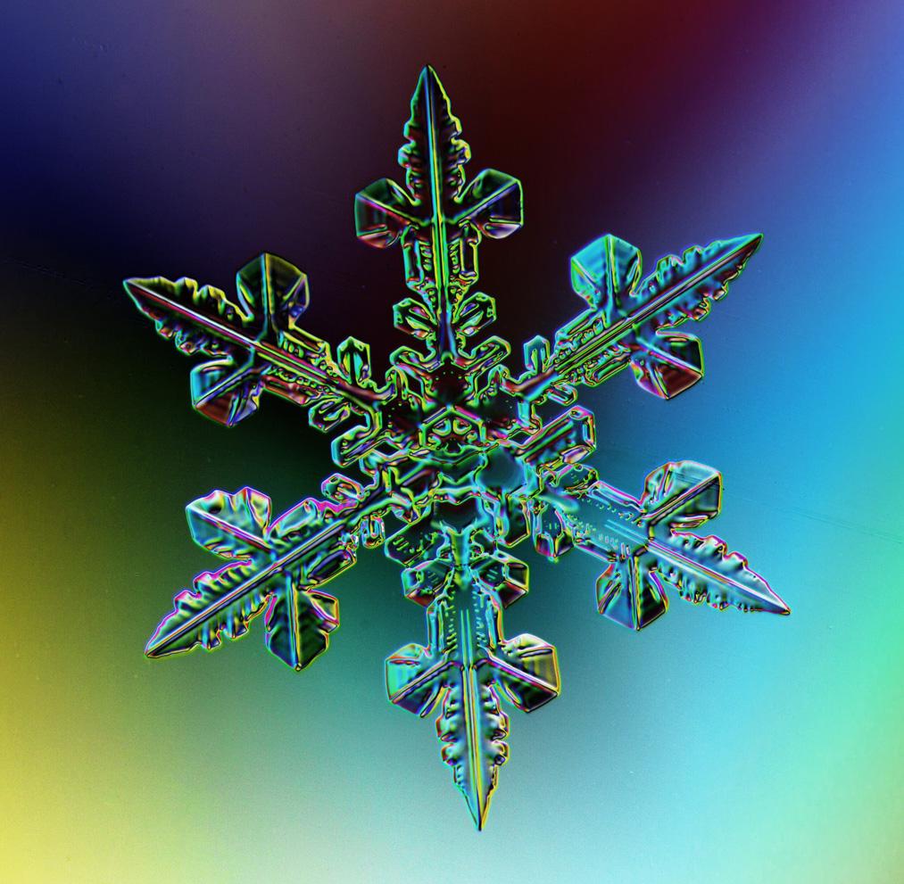 Are snowflakes alive? | Lagniappe = A little bit extra