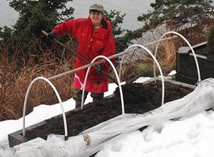 garden beds, soil, winter, garden