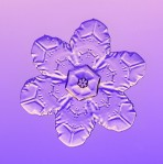 snowflake, snow, snow crystal, ice