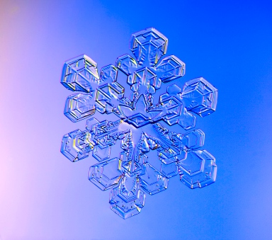 Snowflakes, snow crystals, photograph, ice