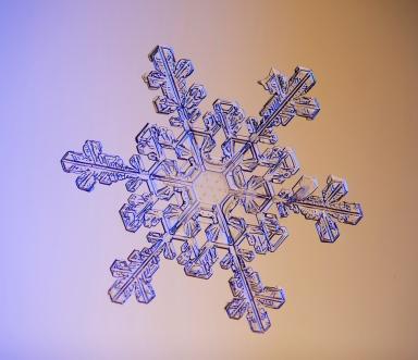 img_6701-6702 snowflake