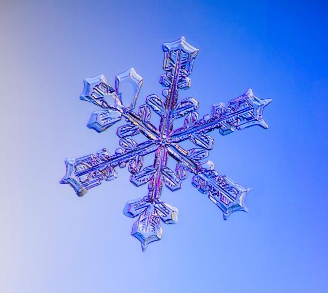 img_6909-6904-snowflake