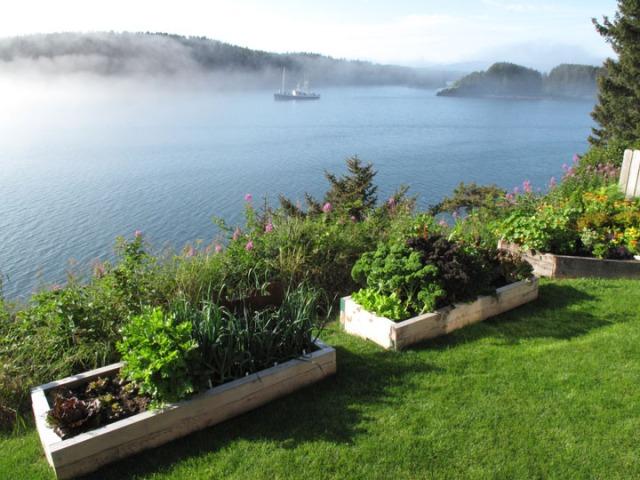 Garden, Alaska, organic, Kodiak Island