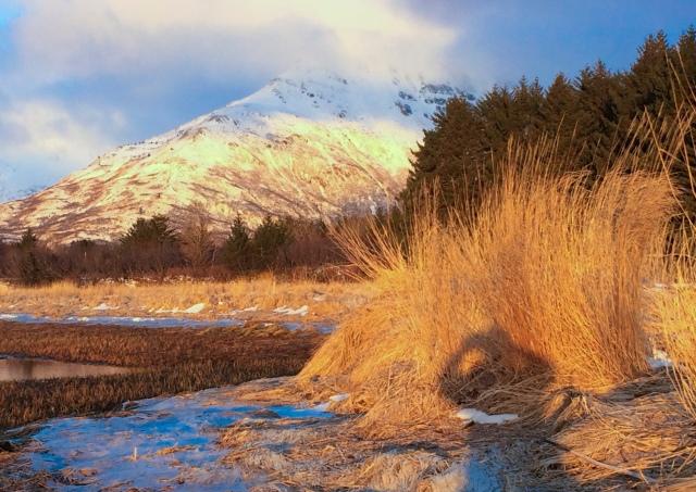 Alaska, Kodiak, photographer, photography, landscape, iPhone photo, picture, photo, camera, sunrise, ice, river, winter, mountain, selfie