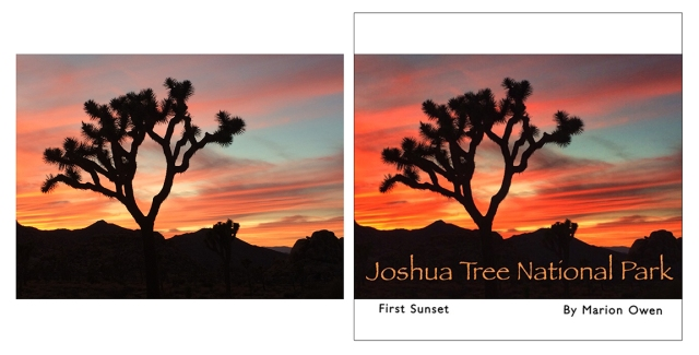 Before and after image using snapseed and Perfect Image app. photo tips, photography tips, photo apps, Instagram, Joshua Tree National Park, Arizona, National Parks