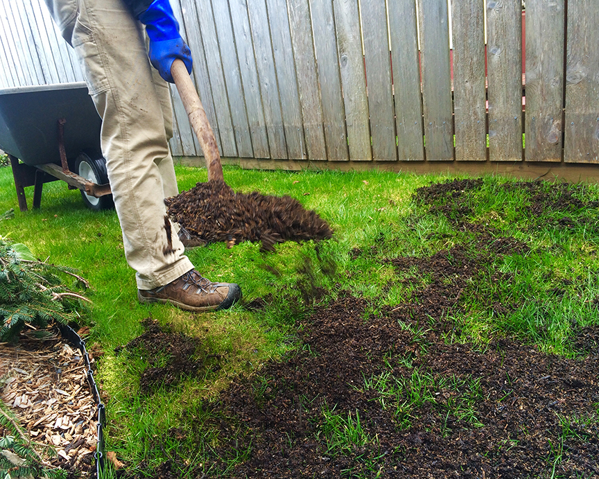 Is your lawn organic think barefoot kids and wild salmon for Lawn topsoil