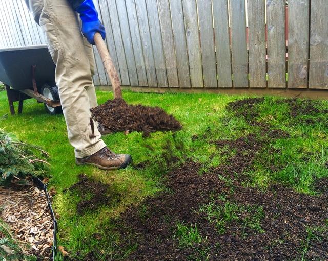 lawn, organic, feed, fertilizer, compost, green