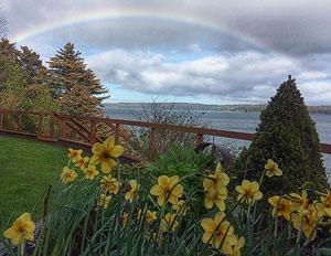 Rainbow appears over Kodiak, Alaska garden