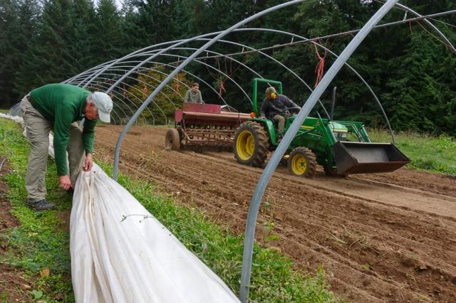 Crop sowing, winter cover crop,