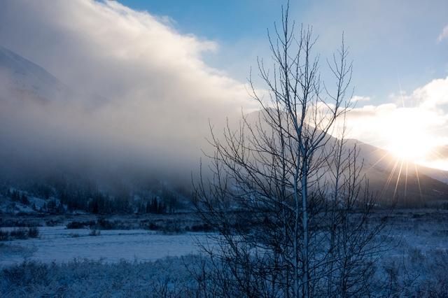 Snow, mountain, sunrise, tree, sun, lake, photograph