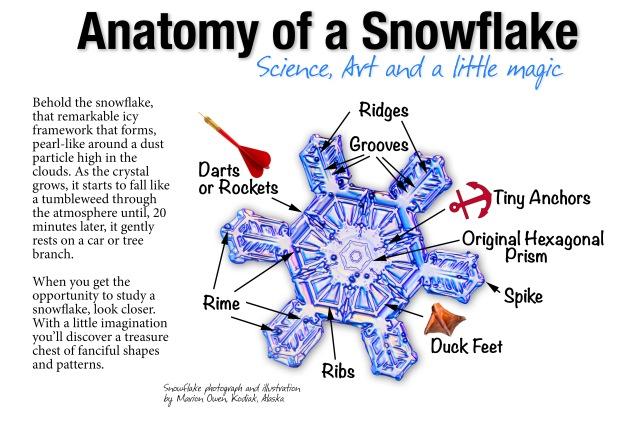 snowflake, photograph, real snowflake