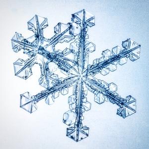 snowflake, snow, macro, photograph, Alaska