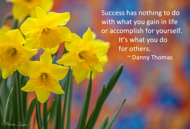 Success, Danny Thomas, quote, poster, Marion Owen, photo, hospice