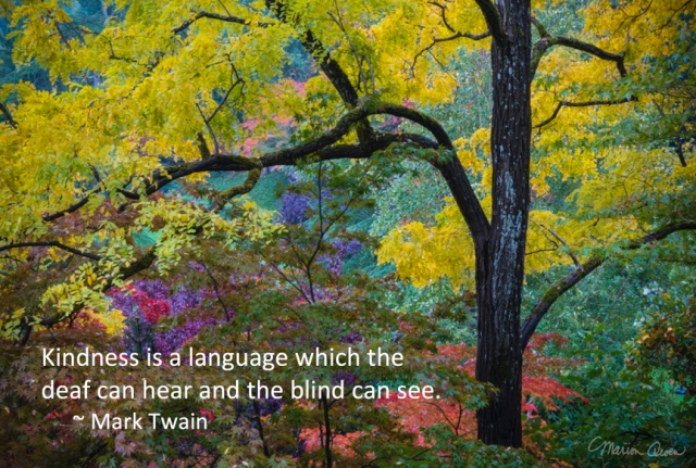 Mark Twain, kindness, quote, hospice, photo, Marion Owen