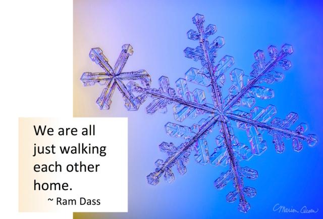 Ram Dass, quote, snowflake, Marion Owen, photo