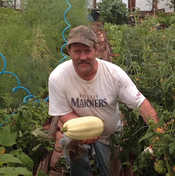 squash, greenhouse, organic, vegetable, Alaska
