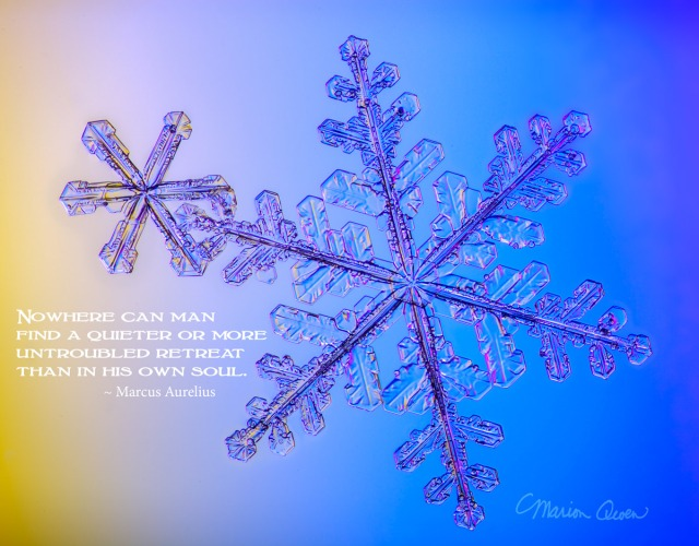 posters, peace, prayer, quote, quotations, photograph, Kodiak, Alaska, Marion Owen, snowflake, real snowflake, snow crystal, Marcus Aurelius