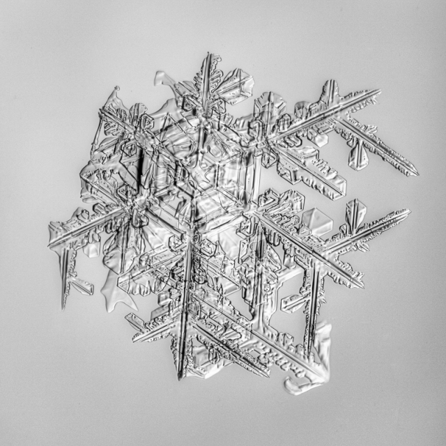 snowflake, snow crystal, real snowflake, photography, macro, winter, snow, Alaska, Marion Owen, Kodiak