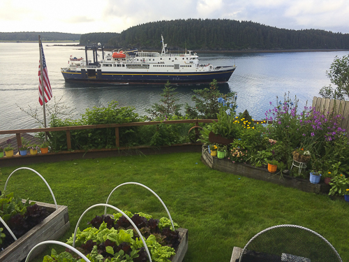 Kodiak, Alaska, kitchen, B&B, garden,