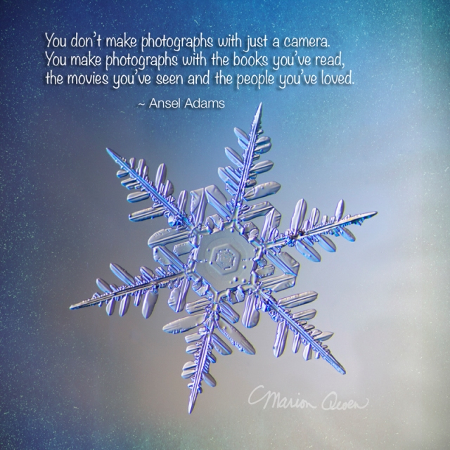 snowflake, snow crystal, real snowflake, photo, Ansel Adams, snow, winter