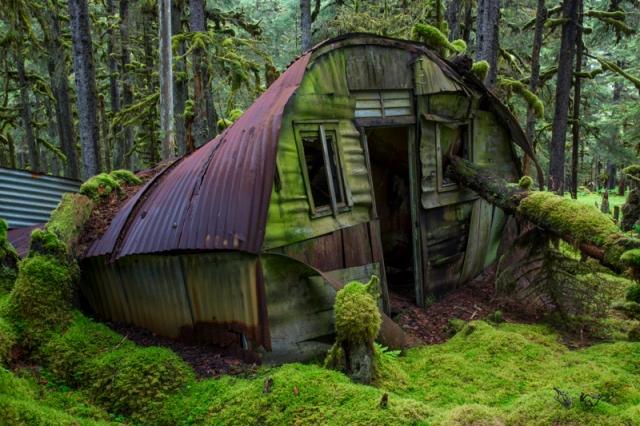 Quonset, WWII, World War 2, Kodiak, Alaska, moss, spruce forest, Long Island, prayer, peace