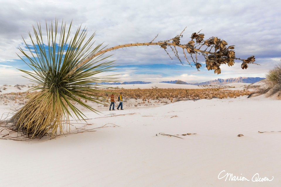 portrait, scale, people, white, sands, national, monument, New Mexico